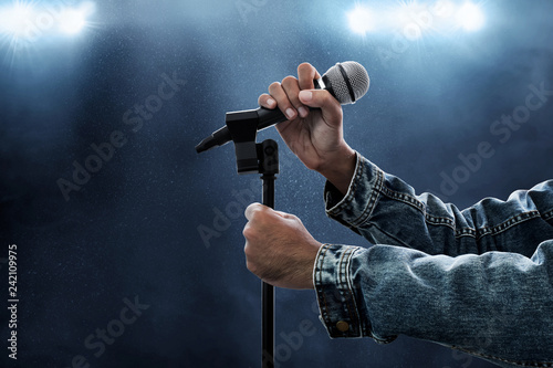 Hands holding microphone Canvas-taulu