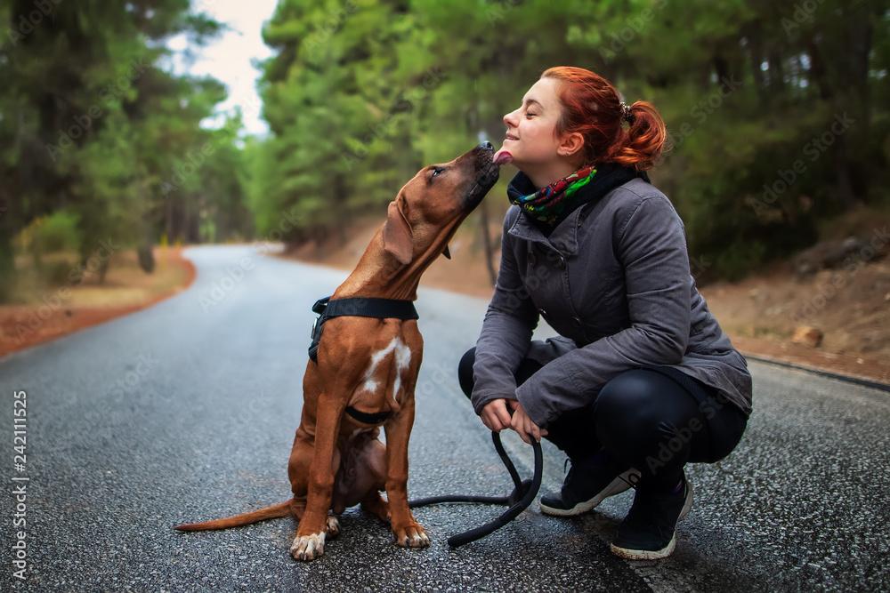Fototapety, obrazy: Portrait of happy teenage girl and Rhodesian ridgeback dog . Dog giving girl sweet kiss lick. Love animals love my pet