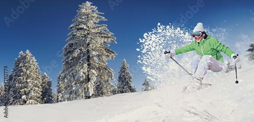 Cuadros en Lienzo skier in action