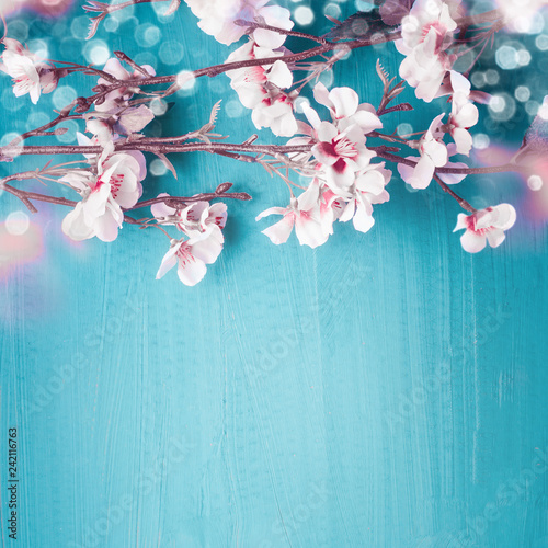 Fotografie, Obraz Beautiful spring cherry blossom branches on turquoise blue background with copy space for your design