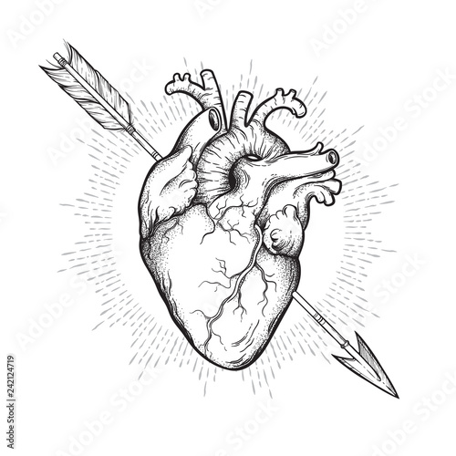 Fotografiet Human heart pierced with cherubs arrow hand drawn line art and dotwork
