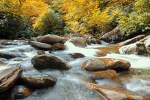 Rocky Stream In The Fall