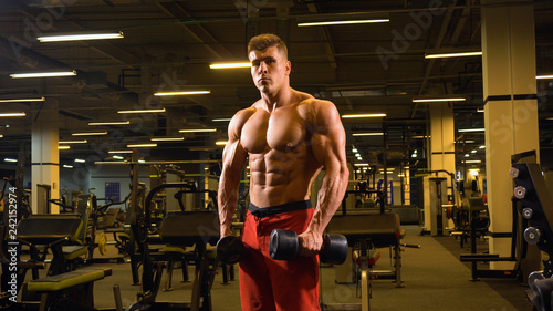 Fotografie, Tablou  Man bodybuilder posing standing in big gym