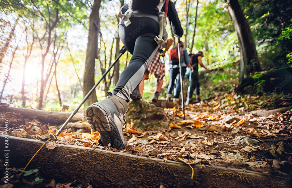 Fototapety, obrazy: Hiker woman with trekking sticks climbs steep on mountain trail, focus on boot