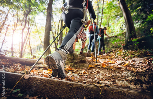 Fototapeta Hiker woman with trekking sticks climbs steep on mountain trail, focus on boot obraz