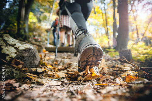 Hiker woman with trekking sticks climbs steep on mountain trail, focus on boot Tableau sur Toile