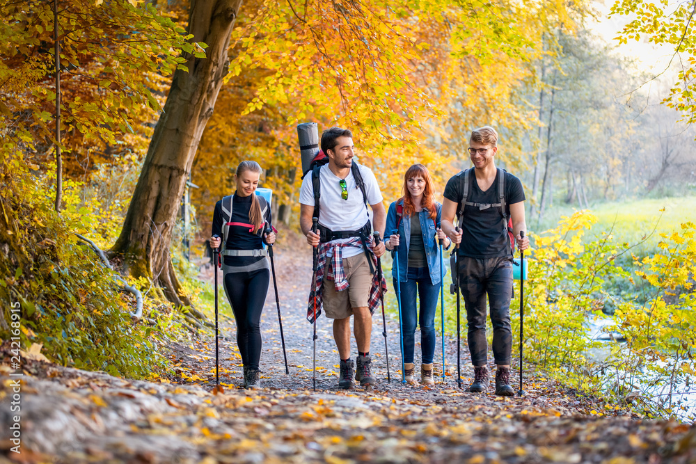 Fototapety, obrazy: Group of hikers trekking in nature, walking through the woods