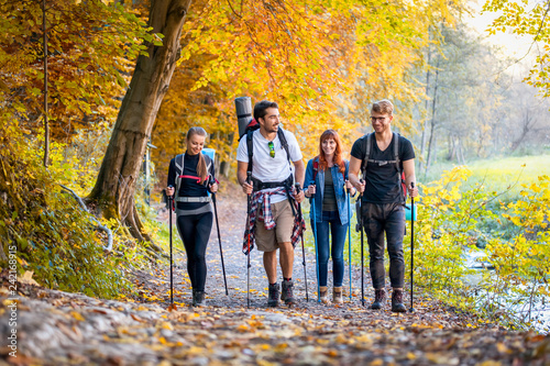 Obraz na plátně  Group of hikers trekking in nature, walking through the woods