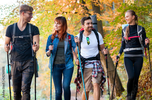 Fotografia  Group of hikers trekking in nature, walking through the woods