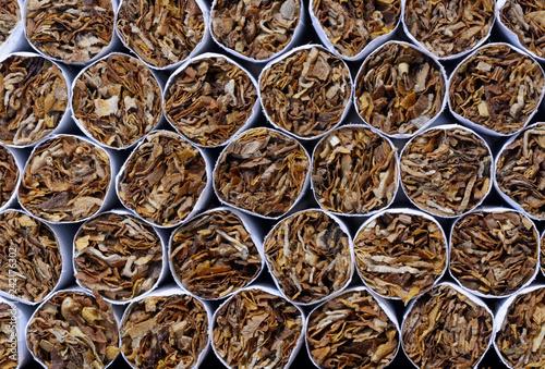 Fotografie, Obraz  Close-up of a heap of tobacco cigarettes, front view