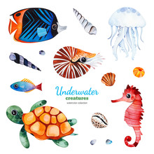Underwater Creatures Watercolor Collection With Multicolored Coral Fish.shells,turtle,jellyfish,seahorse,nautilus Etc.Perfect For Invitations,party Decorations,craft Project,greeting Card,blog,sticker