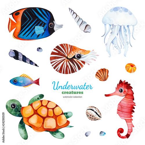 Fototapeta premium Podwodne stworzenia Akwarela kolekcja z wielobarwnymi rybami koralowymi. Muszle, żółw, meduza, konik morski, łodzik itp. Idealny na zaproszenia, dekoracje na przyjęcia, projekt rzemieślniczy, kartkę z życzeniami, blog, naklejkę