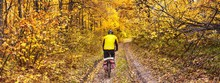 Beautiful Autumn Landscape, Banner, Panorama - Cycling Through Dirt Path In The Autumn Forest