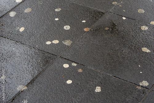 Fényképezés Kaugummireste auf nassem Straßenpflaster. Kaugummis auf Straße.
