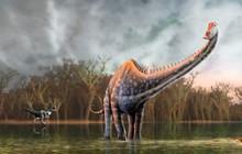 Diplodocus Dinosaur, Illustrat...