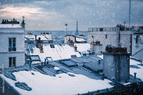 Rooftops and snow in Paris, France Wallpaper Mural
