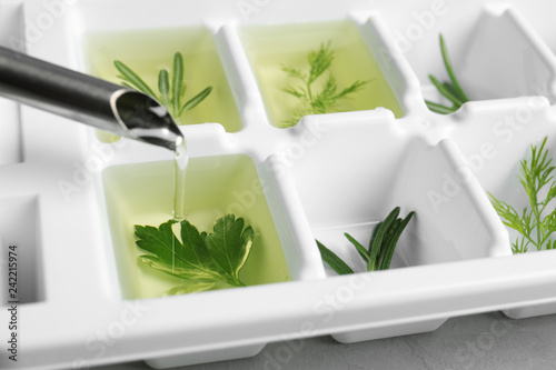 Pouring oil into ice cube tray with herbs, closeup