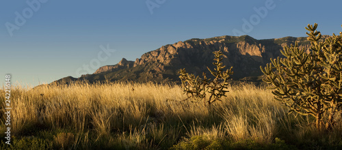 Sunset over New Mexico desert and the Sandia Mountains, outside of Albuquerque Fototapeta