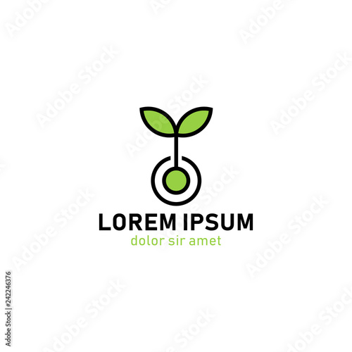 Valokuva  Green ecology plant nature sprout logo template