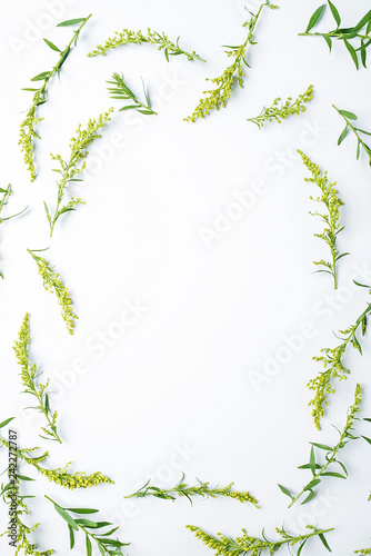 Fresh flowers and plants poster background material Wallpaper Mural
