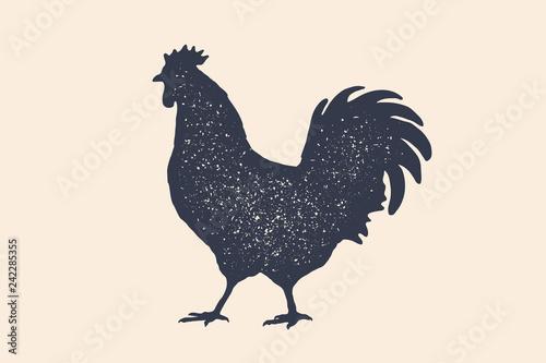 Obraz na plátně Rooster, chicken, hen, poultry, silhouette