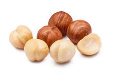 Hazelnuts, Isolated On White Background