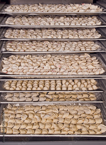 in open manufacturing refrigerator many dumplings
