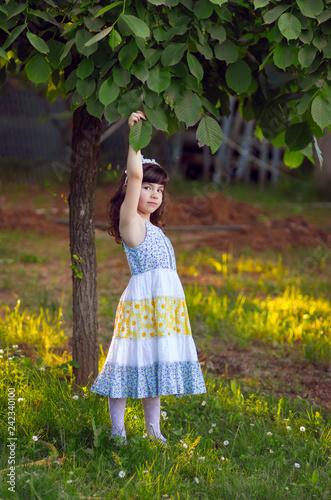 Fotografie, Obraz  Adorable, curte, little girl in colorful dress standing in the garden, holding l