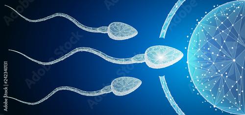 Fotografie, Obraz  Human Egg Cell Fertilization with Sperm Cells Inside of Uterus