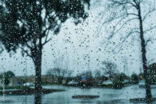 Drops of rain on the window; blurred trees in the background; shallow depth of field