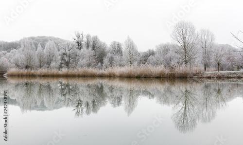 Papiers peints Blanc Paysage hivernale