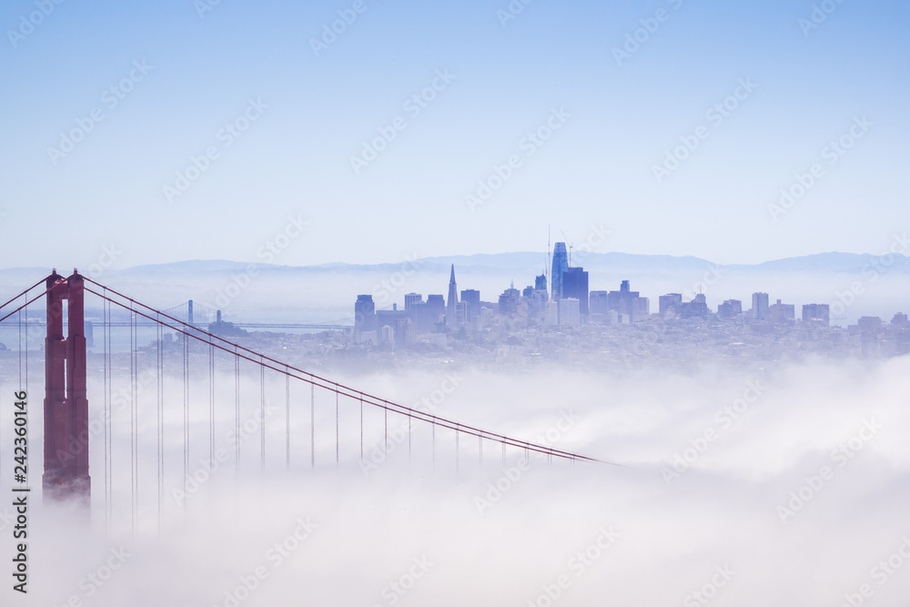 Fototapeta Golden Gate and the San Francisco bay covered by fog, the financial district skyline in the background, as seen from the Marin Headlands State Park, California