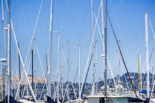 Fotografie, Obraz  Ships moored in a marina, Sausalito, California