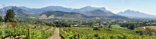 Fotografia  Cape Winelands - Franschhoek Valley