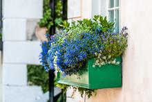 Window Blue Color Flower Baske...