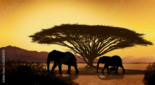 Poster Melon Silhouettes of african with elephant animals