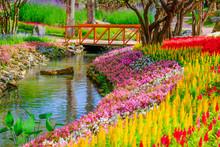 Flower Garden, Winter Flower I...