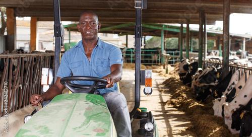 Man proffesional farmer  is sitting in the car near cows at the cow farm Fototapet