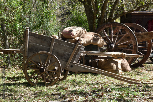 Fototapety, obrazy: view of ancient wooden wagons for freight in the foreground