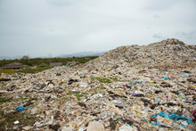 The Mountains Of Garbage That Humans Eat And Leave Are Pile Up.