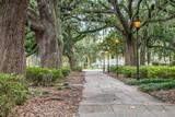 Fototapeta Sawanna - Lanterns in the Forsyth Park in Savannah, GA
