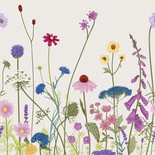Seamless Floral Border. Summer...