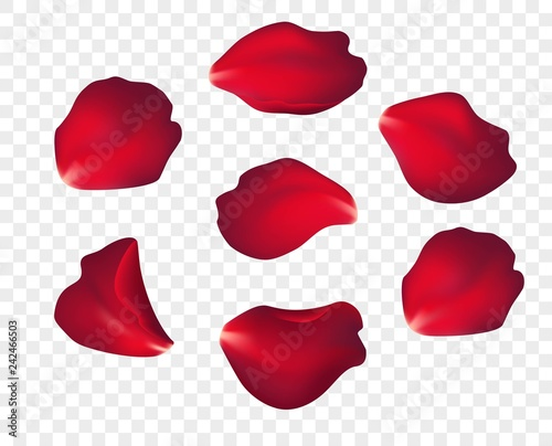 Cuadros en Lienzo  Falling red rose petals isolated on white background
