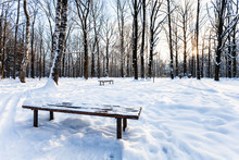 View Of Snow-covered Bench In Urban Park In Winter
