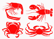 Graphical Color Sea-food Set Isolated On White Background, Vector Illustration