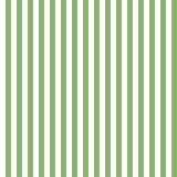 Light Green and White Stripes Seamless Pattern - Narrow vertical light green and white stripes seamless pattern - 242509361