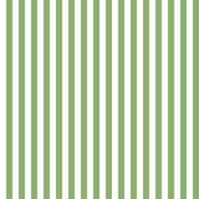Light Green And White Stripes ...