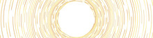 Abstract Gold Concentric Round Lines On White Background - Wide Vector Illustration