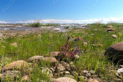 Valokuva  Southern  shores of Lake Ladoga
