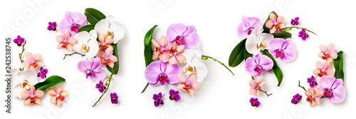 In de dag Orchidee Orchid flower set